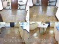 hard floor pics before after