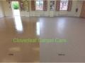 Vinyl floor cleaning 600 width