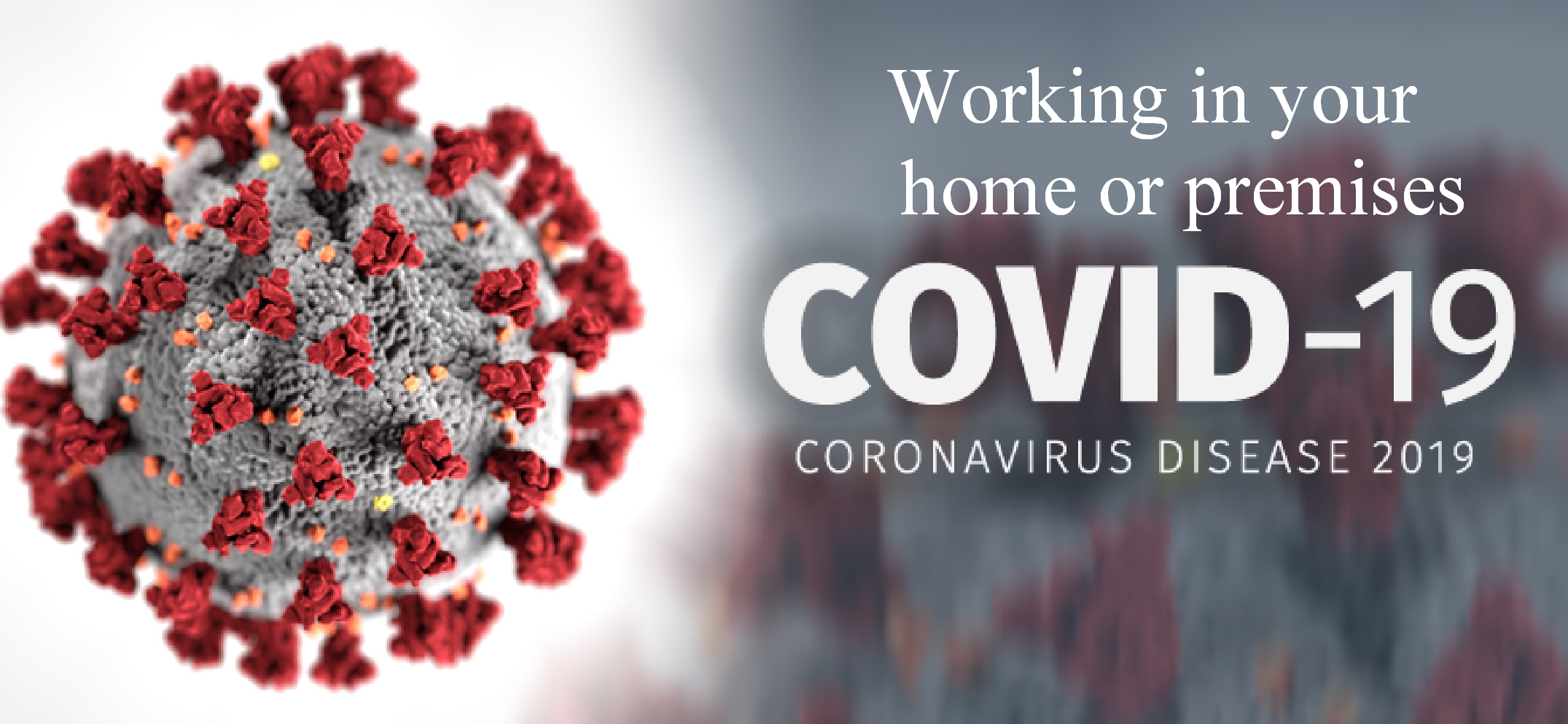 coronavirus working in your home or premises