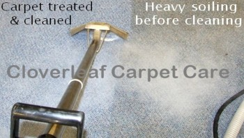 during cleaning of commercial carpet.jpg 850 x 480