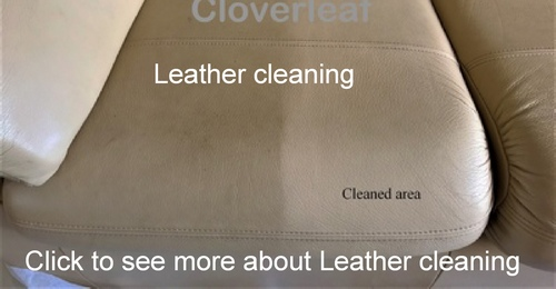 leather cleaning service